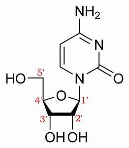 Nucleic Acid Nomenclature