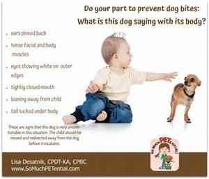 Dog Body Language For Kids | www.pixshark.com - Images ...