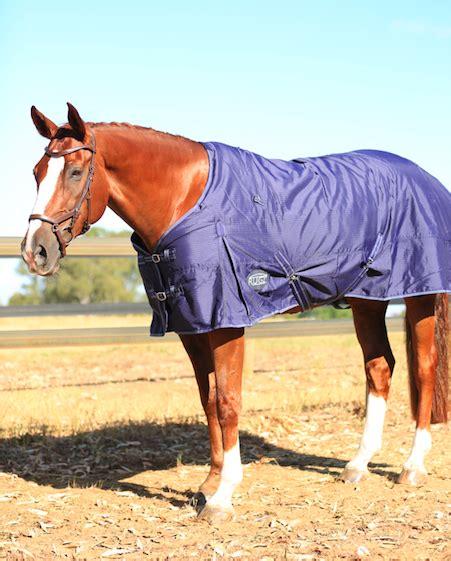 cheap horse tack prohorse