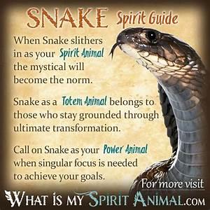 Snake Symbolism & Meaning | Spirit, Totem & Power Animal