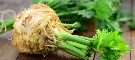 comment cuisiner le celeri les recettes avec du céleri