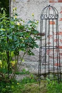 Rankgerüst Für Blauregen : rankhilfe metall bagin schwarz 120cm ~ A.2002-acura-tl-radio.info Haus und Dekorationen