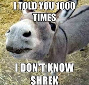 Donkey Memes - donkey meme awesome collections of funny donkey pics