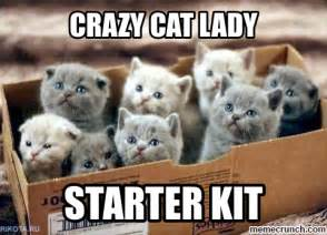 Crazy Cat Lady Meme - crazy cat lady meme