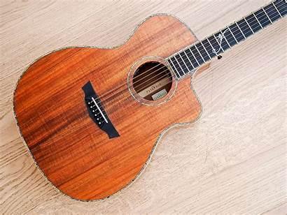 Parkwood Guitar Mike Guitars Seattle Feb Courtesy