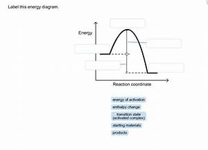 Solved  Label This Energy Diagram