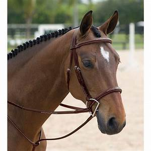 Dy'on Classic Hunter Bridle