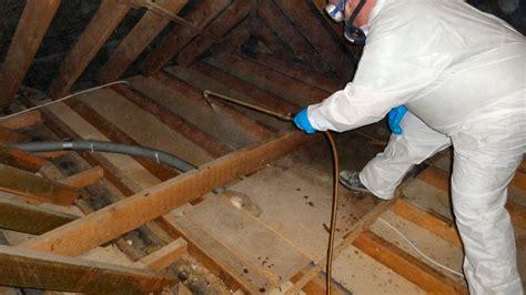 woodworm survey woodworm treatment protectahome