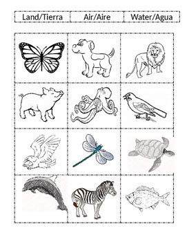 land and water animals worksheets for kindergarten