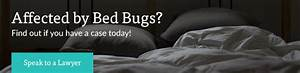 Texas bed bug lawyer attorney for Bed bug lawyer