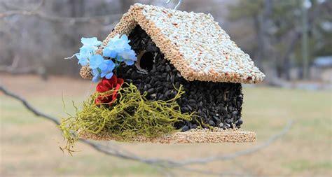 edible birdhouses birdhouses that are edible