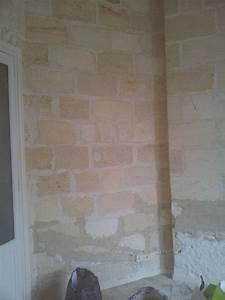 Mur Pierre Apparente : r nover un mur en pierre apparente avec joint ciment ~ Premium-room.com Idées de Décoration