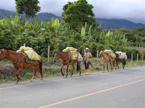 Geografía económica de Colombia   economía de mercado
