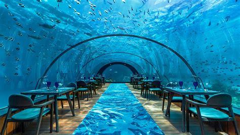 Die Schönste Farbe Der Welt by Die Top 7 Sch 246 Nsten Unterwasserhotels Der Welt Tui