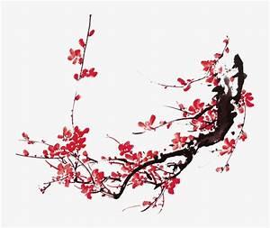 Chinese painting plum blossom, Plum, Flowers, Chinese ...