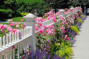 Easy Care Front Yard Landscaping