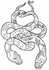 Coloring Snakes Cool Snake Adult Animals Patterns Popular Coloringbay sketch template