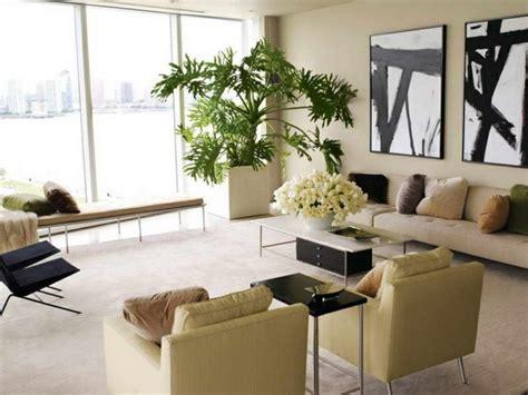 pflegeleichte zimmerpflanzen mit blüten deko pflanzen wohnzimmer