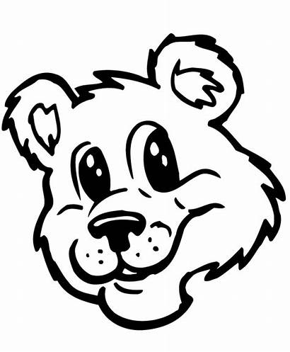 Bear Face Teddy Bears Drawing Head Coloring