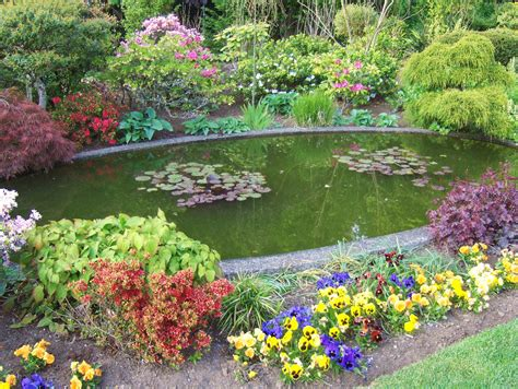 Teich Im Garten  Arten, Preise, Hersteller Gartenbauorg