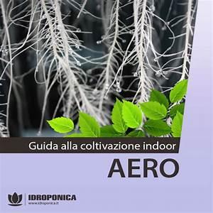 Manuali, guide e video per la coltivazione idroponica