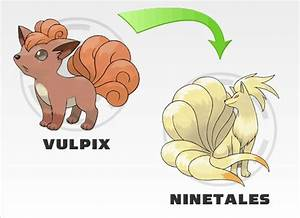 132 best images about vulpix she my second favorite ...