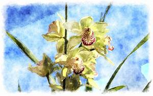 watercolor orchid painting