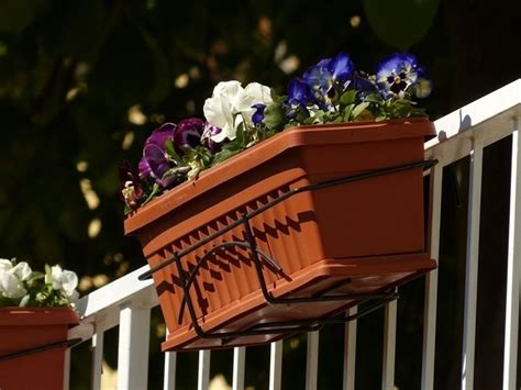 vasi da ringhiera fioriere da balcone vasi e fioriere tipologie di