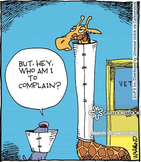 veterinary cartoons  comics funny pictures