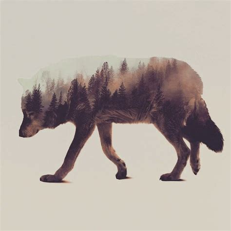 beautiful photo series   double exposure