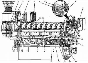 Cat 3126 Engine Parts Diagram  U2022 Downloaddescargar Com