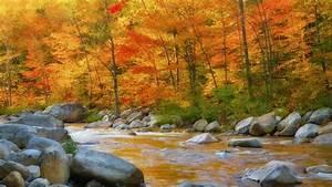 Download Autumn Wallpaper 1920x1080 | Wallpoper #380783
