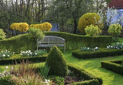 niedrig wachsende hecke so werden hecken im garten mit obi geplant und korrekt gepflanzt