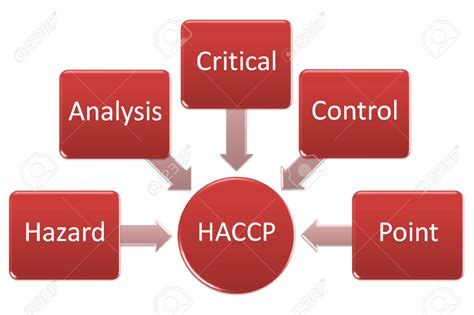 haccp cuisine get professional help in haccp certification haccp class