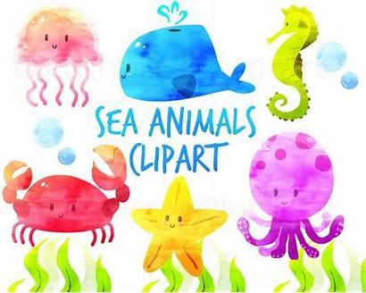 Sea Creatures Animal Clipart Clip Fish Animals