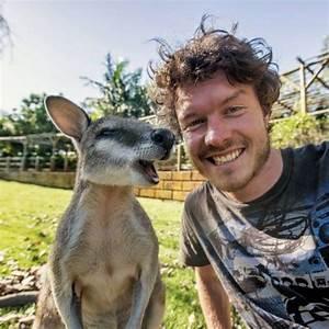 this, man, takes, hilarious, wildlife, selfies