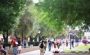 Southern and Dobson Campus | Mesa Community College