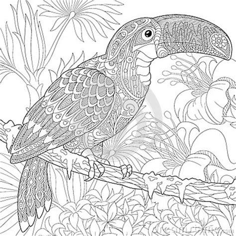 zentangle stylized toucan stock vector image