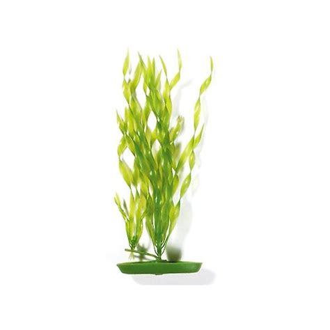 plante artificielle vallisn 233 ria d 233 coration pour aquarium marina wanimo