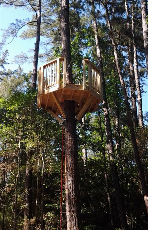 octagon tree platform   zipline exit backyard