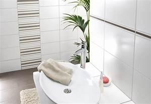 Alte Fliesen Reinigen : badezimmer wandfliesen reinigen kreative ideen f r ~ Lizthompson.info Haus und Dekorationen