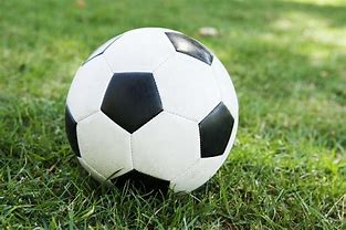 Image result for pics of soccer balls