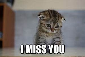 I miss you - I miss you Sad Kitten | Dad | Pinterest ...
