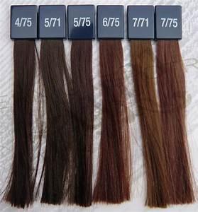 Wella Colour Chart Brown Wella Koleston Perfect Deep Browns Glamot De