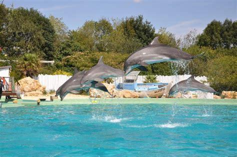 plan 232 te sauvage parc animalier 224 port st pere 44710