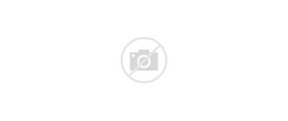 Road Dark Turn Lights Exposure Wide 1080p