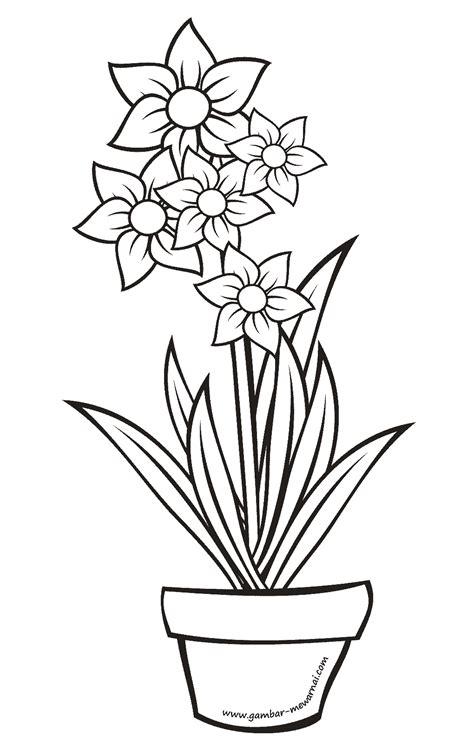 mewarnai bunga dalam pot