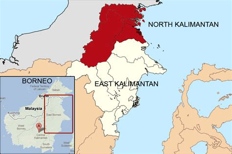 indonesias east kalimantan loses forest area