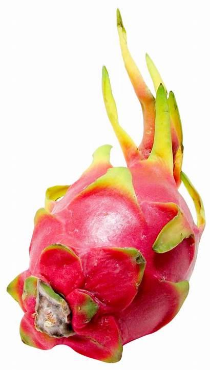 Dragon Fruit Purepng Transparent