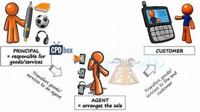 Agency Principal Agent Revenue Ias Ifrs Relationship